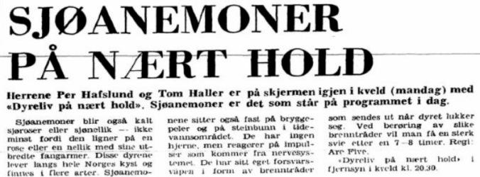 Per Hafslund 27 nov 1972
