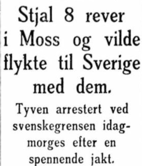 Sigurd hoel overskrift rev