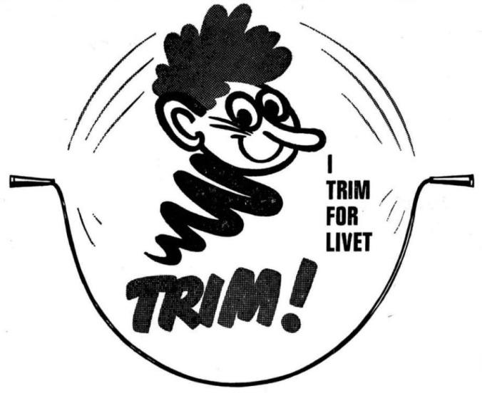 19670522 Trimfigur
